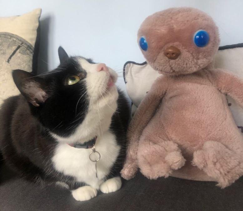 Chaplin meets E.T.